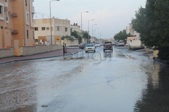 شاهد الصور بعد هطول الأمطار لهذا اليوم الأحد 13-12-2009 View_161260688280