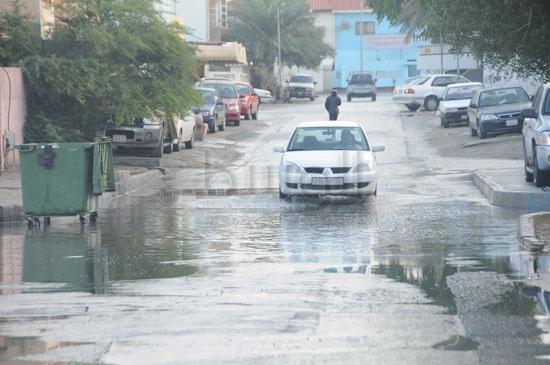 شاهد الصور بعد هطول الأمطار لهذا اليوم الأحد 13-12-2009 View_41260688280