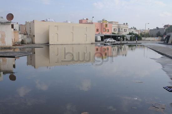 شاهد الصور بعد هطول الأمطار لهذا اليوم الأحد 13-12-2009 View_61260688280