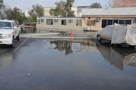 شاهد الصور بعد هطول الأمطار لهذا اليوم الأحد 13-12-2009 View_71260688280