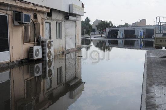 شاهد الصور بعد هطول الأمطار لهذا اليوم الأحد 13-12-2009 View_81260688280