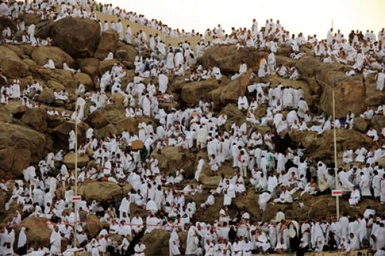 شاهد صورا للحجاج في عرفات view_01289819272.jpg