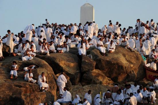 شاهد صورا للحجاج في عرفات view_01289819454.jpg