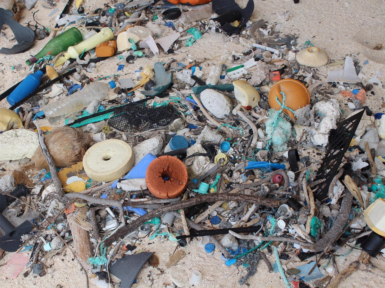جزيرة نائية في المحيط الهادئ تضم أكبر كمية من النفايات ...